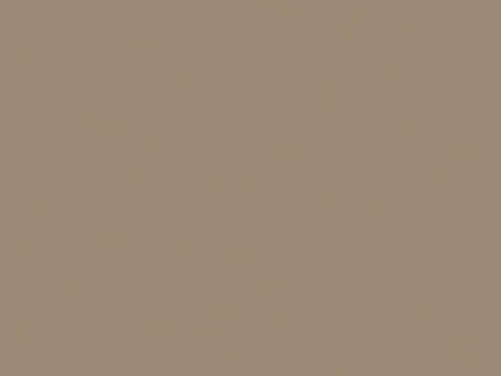 Серый бежевый (RAL 1019)