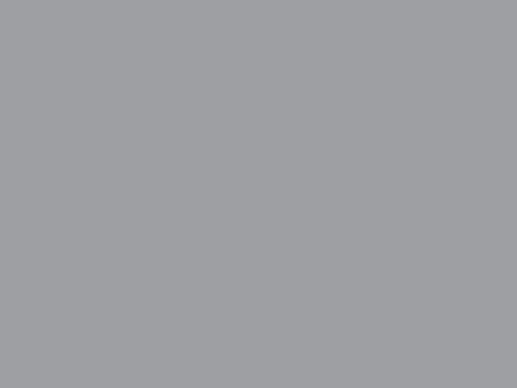 RAL 7004 серый